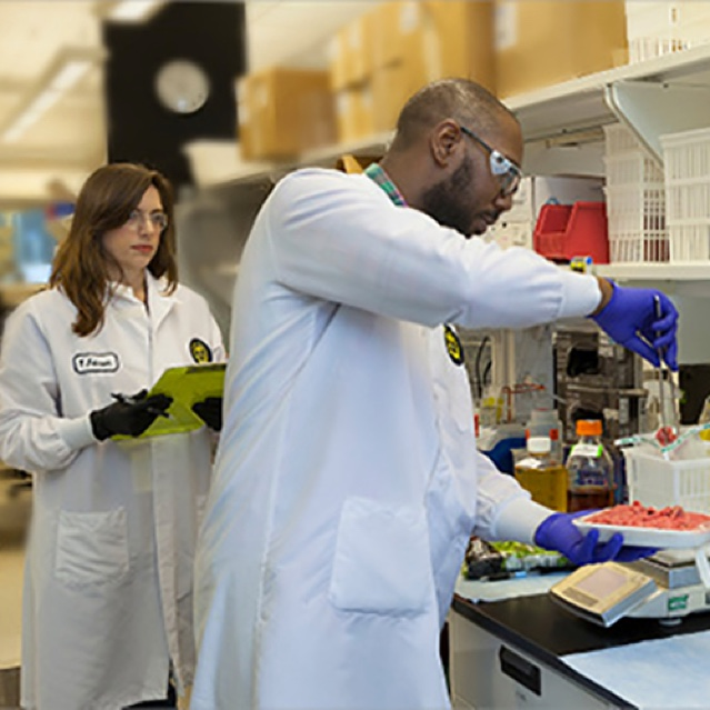 Pharmacists in a Lab